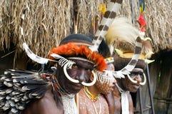 一个Papuan部落的人们在传统衣裳的 免版税库存照片