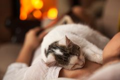 一个purrfect晚上-放松与她的小猫的妇女 免版税库存图片