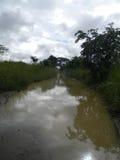 一串浸满水路/足迹 库存照片