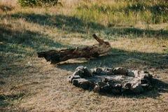 一串烤肉的区域在庭院草甸的绿草 木手工制造长凳绘与灰色油漆 火盆是m 免版税库存照片