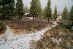一串足迹在一个农村冬天山农场 免版税库存照片