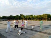 一些个孩子学会中国武道 免版税库存图片