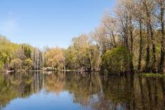 一些反弹严格晴朗那里不是的蓝色云彩日由于域重点充分的绿色横向小的移动工厂显示天空是麦子白色风 有池塘、蓝天和树的都市公园,艰苦 库存照片