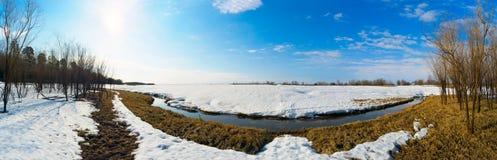 一些反弹严格晴朗那里不是的蓝色云彩日由于域重点充分的绿色横向小的移动工厂显示天空是麦子白色风 西伯利亚, Yugra,全景 图库摄影
