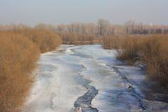 一些反弹严格晴朗那里不是的蓝色云彩日由于域重点充分的绿色横向小的移动工厂显示天空是麦子白色风 反映河小的水 冰熔化 库存图片