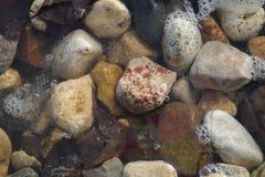 一些块石头在水中 免版税库存照片