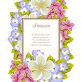 一些朵花框架  对卡片设计,邀请,招呼为生日,婚礼,党,假日,庆祝,华伦泰` 免版税库存照片
