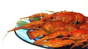 一些煮沸的小龙虾 影视素材