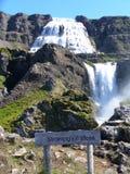 一些硕大瀑布在冰岛 免版税库存图片