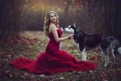 一件别致的红色礼服的一个美丽的白肤金发的女孩,走与在秋天森林意想不到的大气照片的一条多壳的狗 库存照片