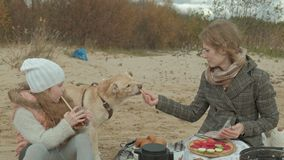 一件外套的年轻女人有有卷发、妈妈和女儿的一个女孩的,坐海滩由河,海洋,有野餐 股票录像