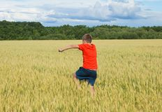 一件明亮的T恤杉的男孩沿五谷耳朵增长的黄色领域,反对蓝天,背面图的五谷跑 库存照片