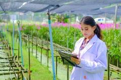 一件白色礼服的年轻女人研究员和在种植一朵新的兰花前探索庭院 免版税库存图片