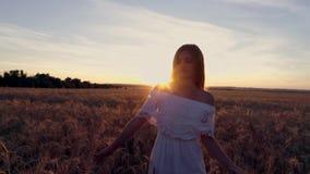 一件白色礼服的浪漫女孩走在金黄麦田的在阳光下 免版税库存照片
