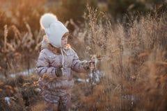 一件米黄夹克和一个白色帽子的走在领域的一个女孩的秋天画象 图库摄影