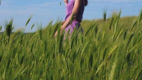 一件紫色礼服的红发女孩沿沿摇摆在风的绿草和小尖峰的领域的一条道路走 股票录像
