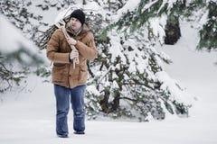 一件红色夹克有草丛的和一条绳索的一个人在冬天森林人收集木柴 库存照片