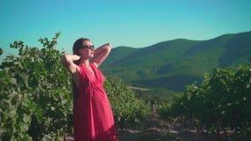 一件红色礼服的一个怀孕的女孩在葡萄园里站立 有长发的一个怀孕的女孩在葡萄园里站立 股票视频