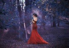 一件红色礼服的可爱的女孩 免版税库存照片