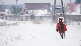 一件红色礼服的可爱的年轻浅黑肤色的男人快速地疾驰在马的通过雪在冬天 股票录像