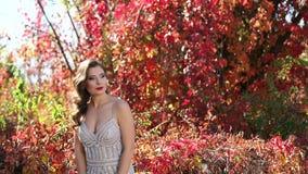一件美丽的晚礼服的走在秋天金黄公园的女孩特写镜头  影视素材