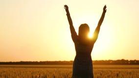 一件美丽的礼服的一个女孩在一块金黄麦田站立在日落时间并且停滞她的手 影视素材