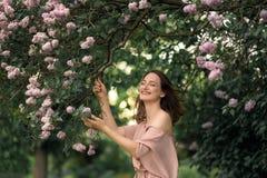 一件美丽的礼服的少妇在淡紫色灌木附近站立 图库摄影