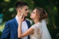 一件美丽的鞋带礼服的新娘调整新郎的衣服并且专心地看他 一个人享受秀丽  图库摄影