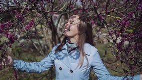 一件蓝色外套的美女在灌木和微笑的开花的绯红色分支站立 股票录像