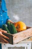一件蓝色礼服的一个女孩拿着秋天收获 库存照片