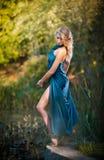一件蓝色长的礼服的少妇在日落在森林里 免版税库存照片