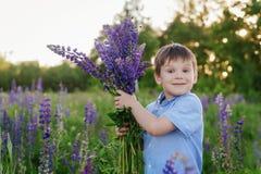 一件蓝色T恤杉的可爱的男孩有羽扇豆花束的在草甸 图库摄影