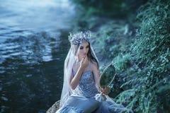 一件银色礼服的年轻公主 免版税库存照片