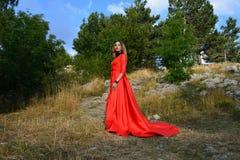 一件长的猩红色礼服的妇女在山的一个森林里 库存照片