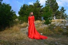 一件长的猩红色礼服的妇女在山的一个森林里 库存图片