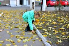 一件高尔夫球外套的一个女孩在秋天收集黄色叶子 免版税库存图片