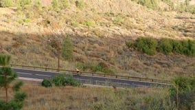 一件黄色T恤杉的一个人在体育路自行车在山的路被找出的上流乘坐 影视素材