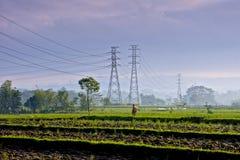 一位农夫 免版税图库摄影