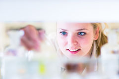 一位女性研究员的纵向在化学实验室 免版税库存照片
