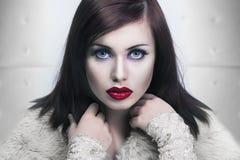 一位小姐的冷纵向有红色嘴唇的 库存图片