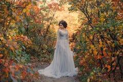 一位年轻公主在金黄秋天自然走 库存照片
