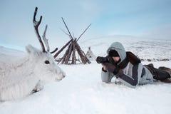 一位年轻摄影师射击说谎在雪的一头白色和逗人喜爱的鹿 非常寒冷 俄罗斯,西伯利亚, Yamal 库存照片