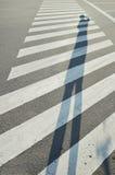 一位摄影师的高阴影斑马线的 免版税库存照片