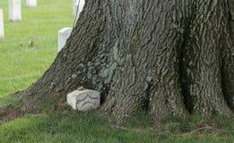 一位未知的美国战士的暗藏的,长满的坟墓,阿灵顿国家公墓 库存照片