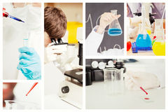一位被保护的科学家的画象的综合图象投下在试管的液体 免版税库存图片