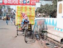 一位长笛卖主在加尔各答,印度 免版税库存照片