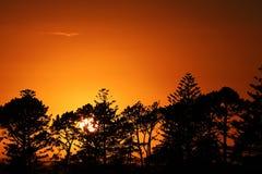 一切有它的日落,仅夜末端在黎明 库存图片