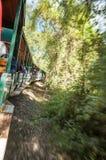一列火车在伊瓜苏 免版税库存照片
