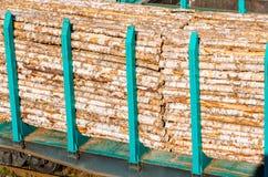 一列火车的运货车在铁路的,货物木材,树树干  图库摄影