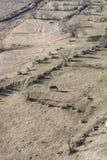 一匹吃草的马和领域在谷在Uplistsikhe附近 免版税库存图片